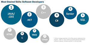 The most-wanted developer skills