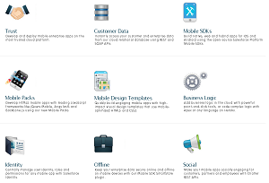 Some of the Salesforce Platform Mobile Services