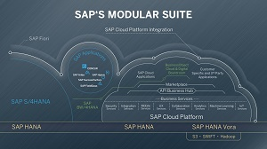 The Big SAP Picture