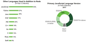 Programming Languages Used