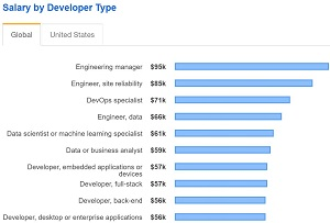 Top 10 Salaries by Developer Typ