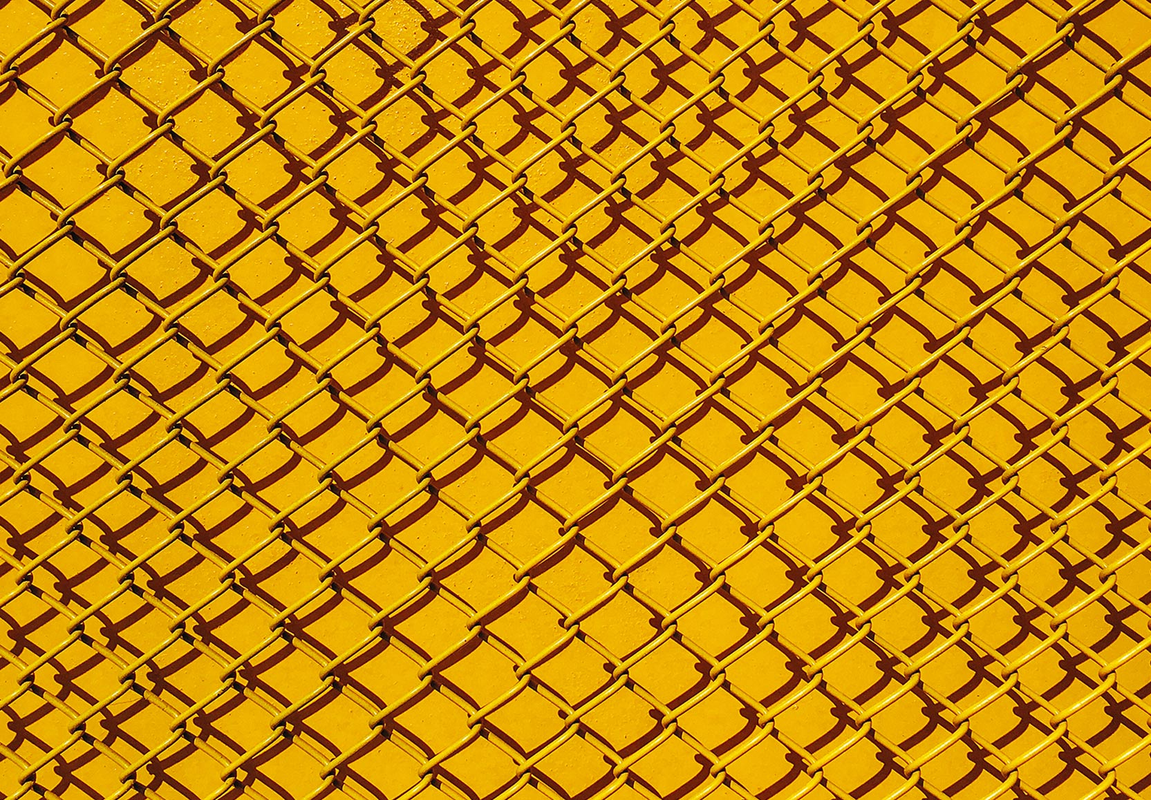 Yellow Fence Graphic