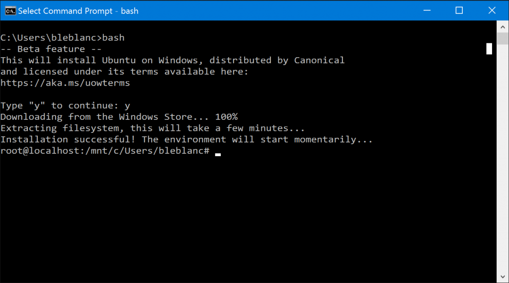 Developers Voice Opinions on Bash for Windows Features, Including